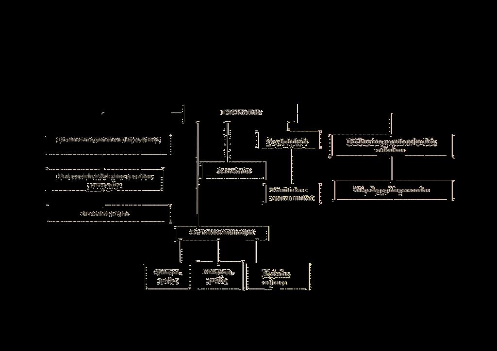 Organizacinė-struktūra2020 (2) (1)